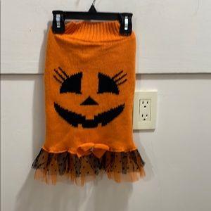 Dog Halloween pumpkin sweater